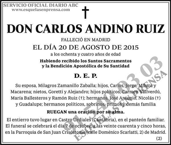Carlos Andino Ruiz